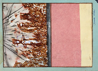 Paper_Shower-scene_15x11cm_Sepia,-watercolour,-collage_2008